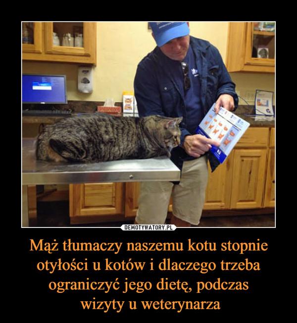 Mąż tłumaczy naszemu kotu stopnie otyłości u kotów i dlaczego trzeba ograniczyć jego dietę, podczas wizyty u weterynarza –