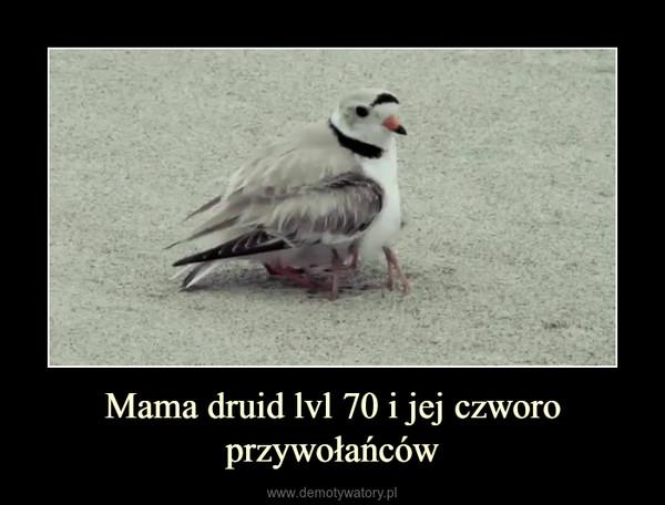 Mama druid lvl 70 i jej czworo przywołańców –