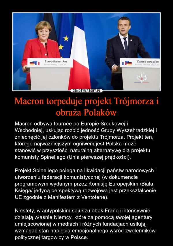 Macron torpeduje projekt Trójmorza i obraża Polaków – Macron odbywa tournée po Europie Środkowej i Wschodniej, usiłując rozbić jedność Grupy Wyszehradzkiej i zniechęcić jej członków do projektu Trójmorza. Projekt ten, którego najważniejszym ogniwem jest Polska może stanowić w przyszłości naturalną alternatywę dla projektu komunisty Spinellego (Unia pierwszej prędkości). Projekt Spinellego polega na likwidacji państw narodowych i utworzeniu federacji komunistycznej (w dokumencie programowym wydanym przez Komisję Europejskim /Biała Księga/ jedyną perspektywą rozwojową jest przekształcenie UE zgodnie z Manifestem z Ventotene).Niestety, w antypolskim sojuszu obok Francji intensywnie działają właśnie Niemcy, które za pomocą swojej agentury umiejscowionej w mediach i różnych fundacjach usiłują wzmagać stan napięcia emocjonalnego wśród zwolenników politycznej targowicy w Polsce.