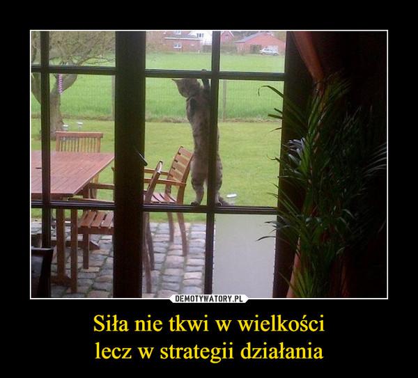 Siła nie tkwi w wielkościlecz w strategii działania –