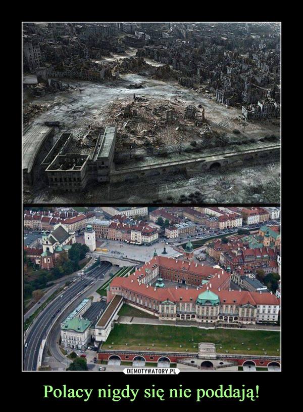 Polacy nigdy się nie poddają! –