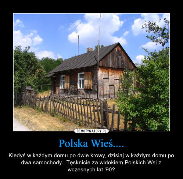 Polska Wieś.... – Kiedyś w każdym domu po dwie krowy, dzisiaj w każdym domu po dwa samochody.. Tęsknicie za widokiem Polskich Wsi z wczesnych lat '90?