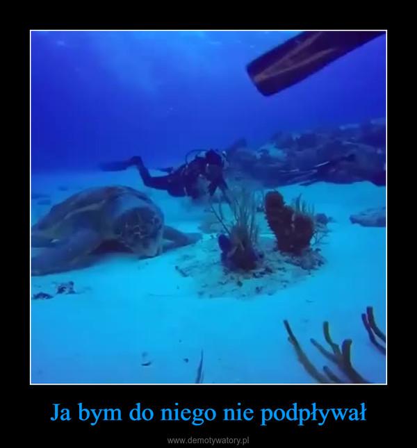 Ja bym do niego nie podpływał –
