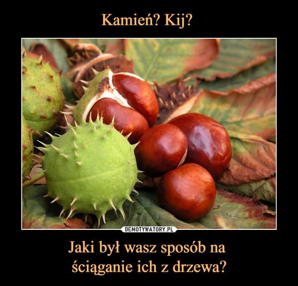 Jaki był wasz sposób na ściąganie ich z drzewa? –