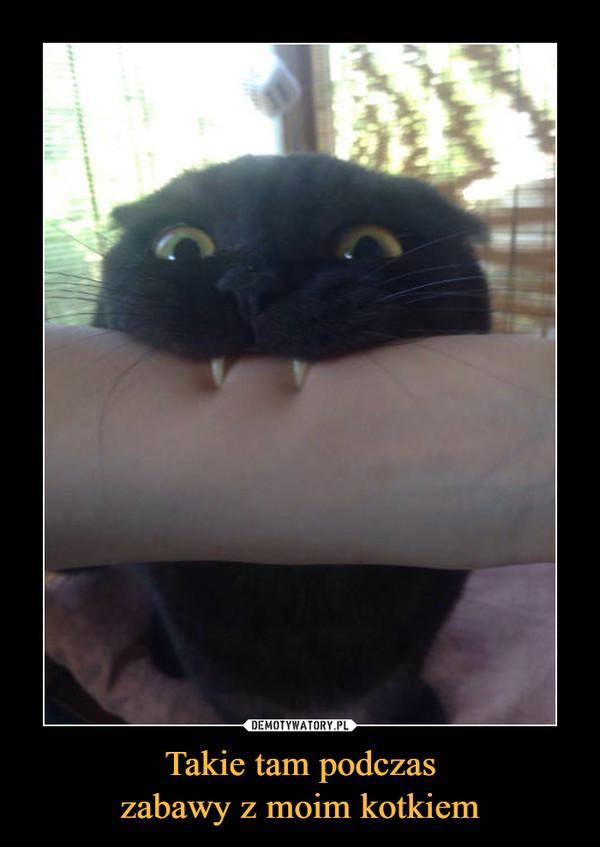 Takie tam podczaszabawy z moim kotkiem –
