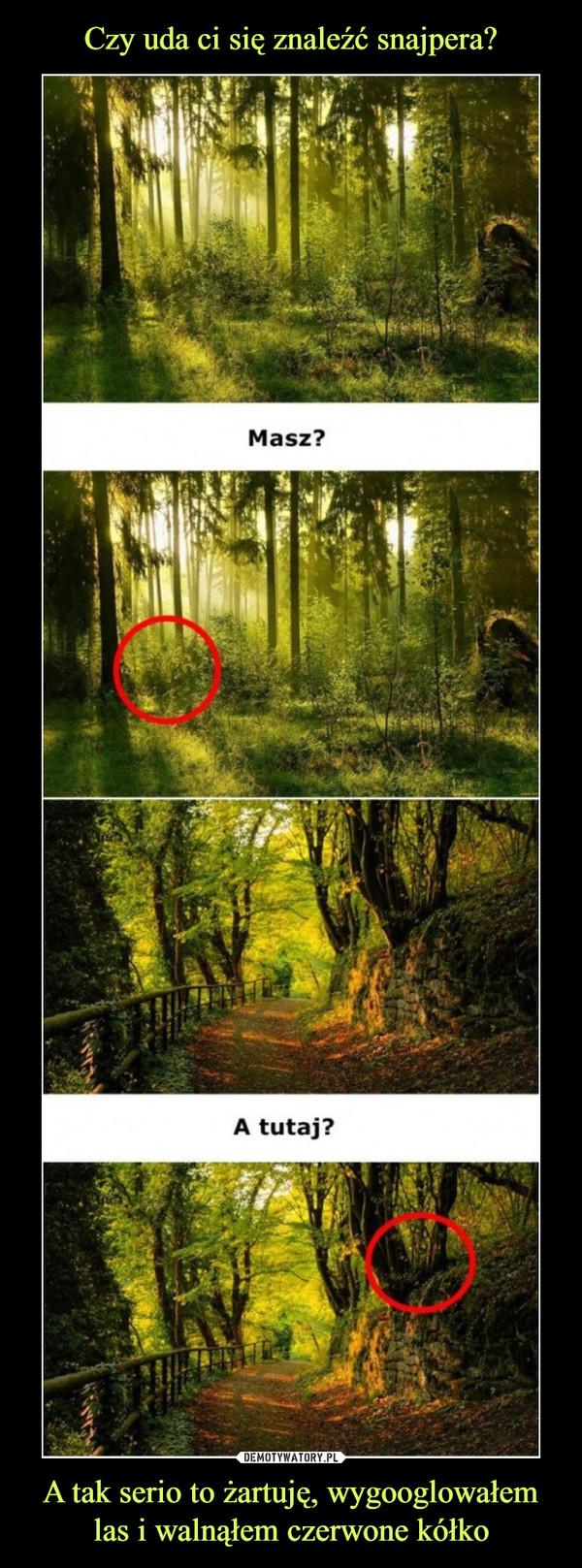 A tak serio to żartuję, wygooglowałem las i walnąłem czerwone kółko –  Masz?A tutaj?