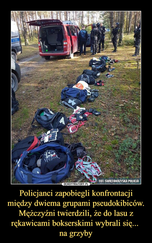 Policjanci zapobiegli konfrontacji między dwiema grupami pseudokibiców. Mężczyźni twierdzili, że do lasu z rękawicami bokserskimi wybrali się...  na grzyby