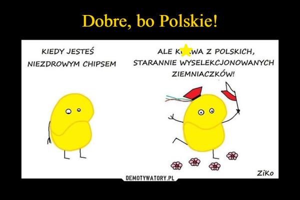 –  kiedy jesteś niezdrowym chipsemale kurwa z polskich starannie wyselekcjonowanych ziemniaczków!