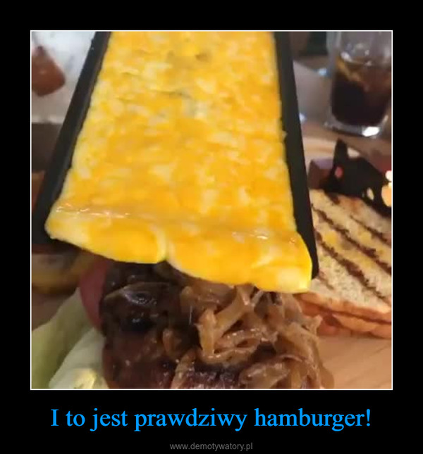 I to jest prawdziwy hamburger! –