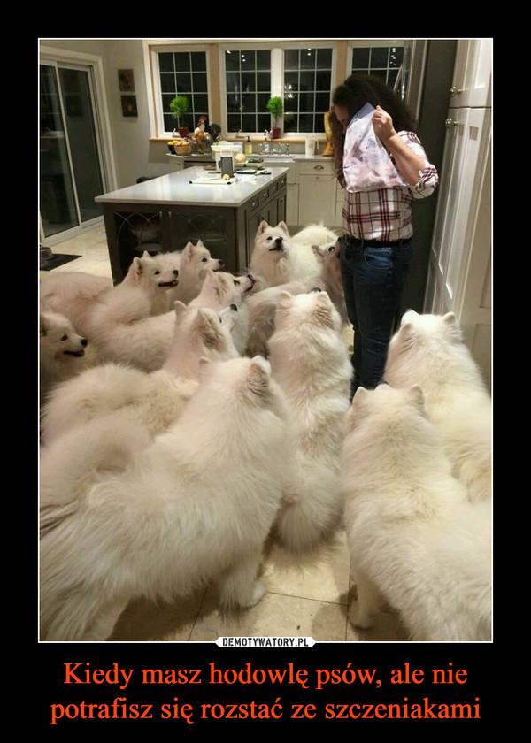 Kiedy masz hodowlę psów, ale nie potrafisz się rozstać ze szczeniakami –