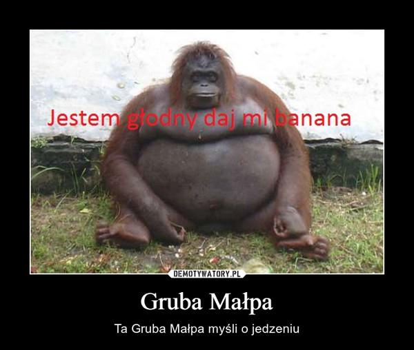 Gruba Małpa – Ta Gruba Małpa myśli o jedzeniu