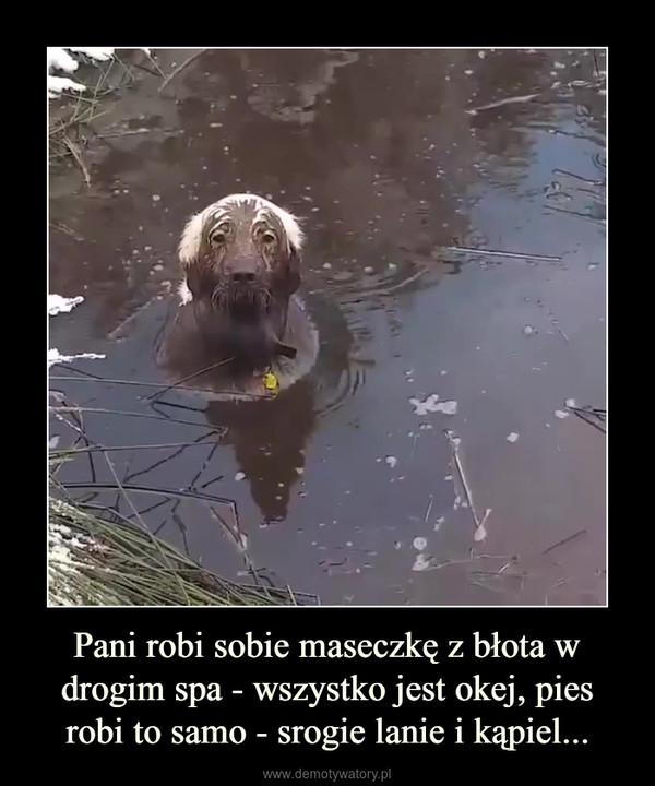 Pani robi sobie maseczkę z błota w drogim spa - wszystko jest okej, pies robi to samo - srogie lanie i kąpiel... –