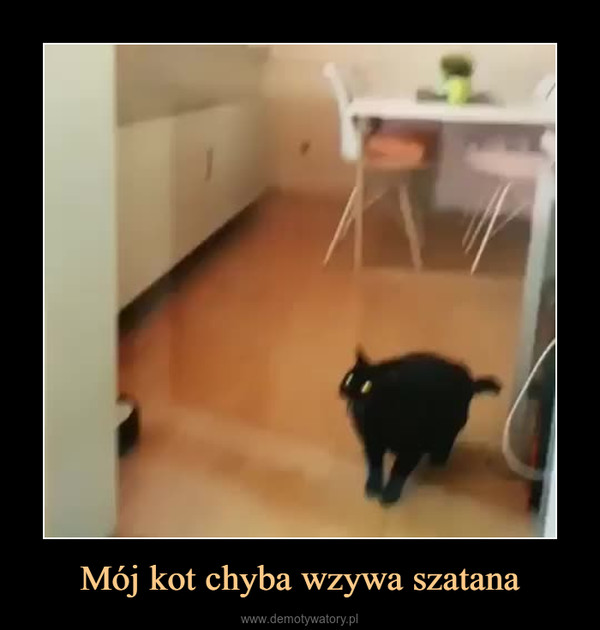 Mój kot chyba wzywa szatana –