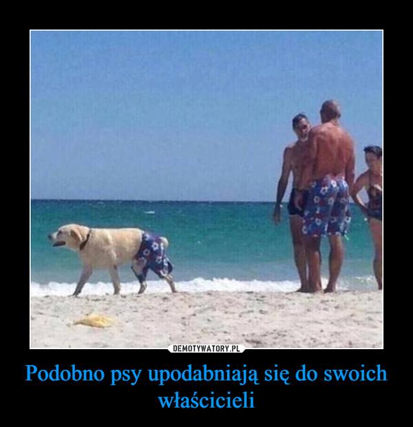 Podobno psy upodabniają się do swoich właścicieli –