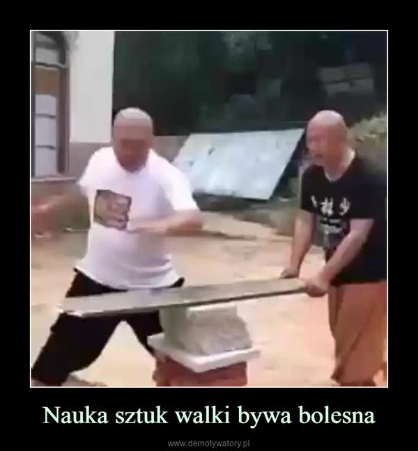 Nauka sztuk walki bywa bolesna –