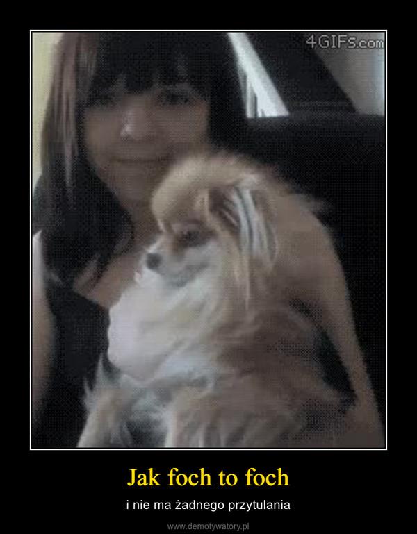 Jak foch to foch – i nie ma żadnego przytulania