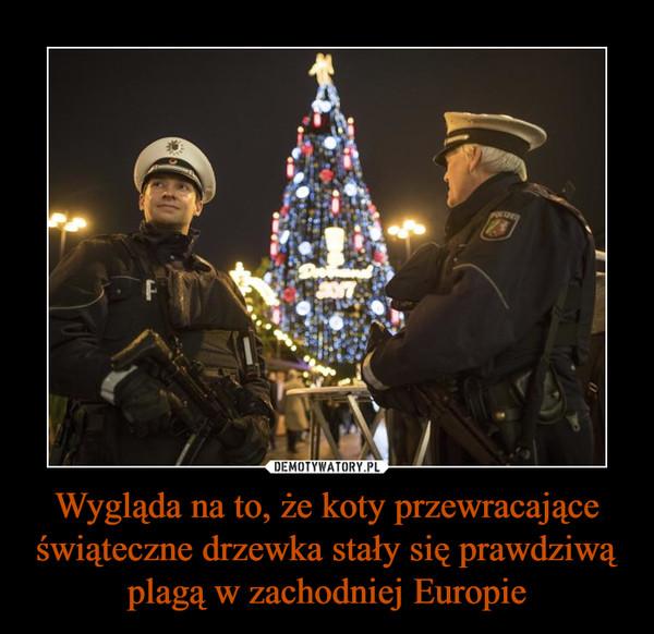 Wygląda na to, że koty przewracające świąteczne drzewka stały się prawdziwą plagą w zachodniej Europie –
