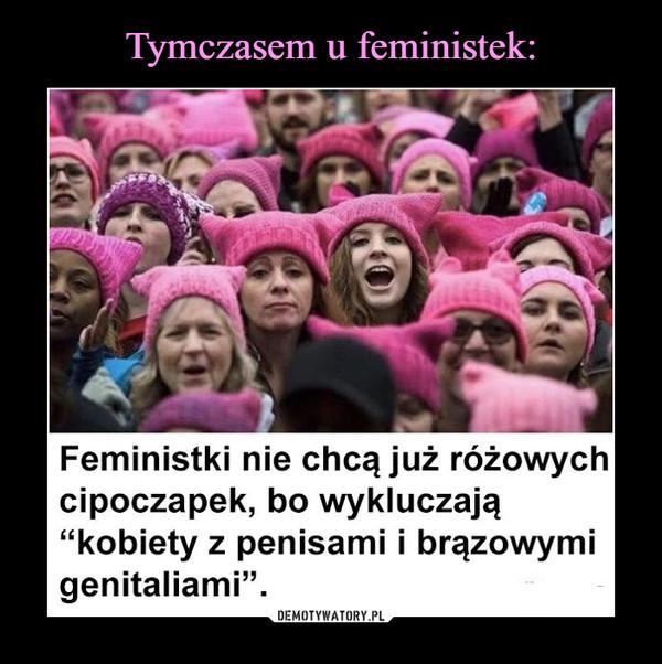 """–  Feministki nie chcą już różowych cipoczapek, bo wykluczają """"kobiety z penisami i brązowymi genitaliami""""."""
