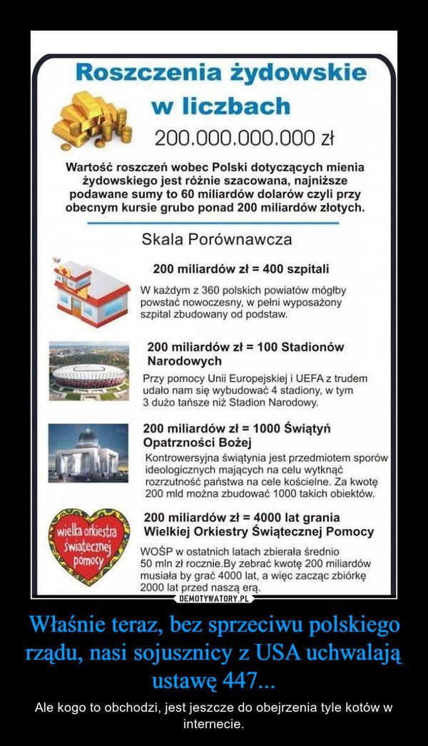 Właśnie teraz, bez sprzeciwu polskiego rządu, nasi sojusznicy z USA uchwalają ustawę 447... – Ale kogo to obchodzi, jest jeszcze do obejrzenia tyle kotów w internecie.