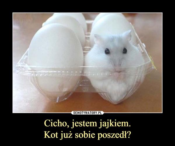 Cicho, jestem jajkiem.Kot już sobie poszedł? –
