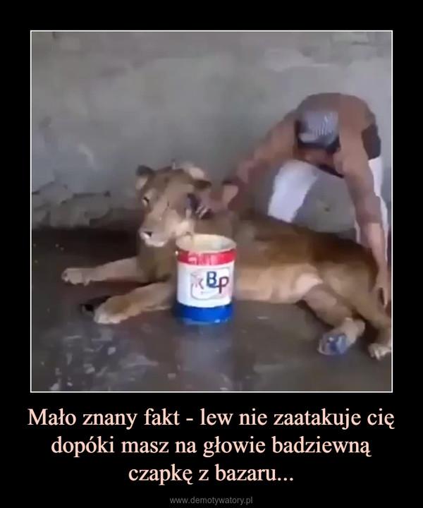 Mało znany fakt - lew nie zaatakuje cię dopóki masz na głowie badziewną czapkę z bazaru... –