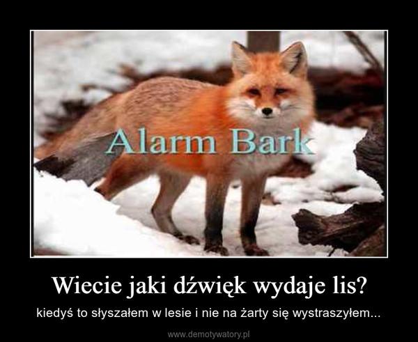 Wiecie jaki dźwięk wydaje lis? – kiedyś to słyszałem w lesie i nie na żarty się wystraszyłem...