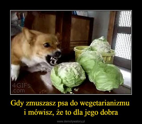 Gdy zmuszasz psa do wegetarianizmu i mówisz, że to dla jego dobra –