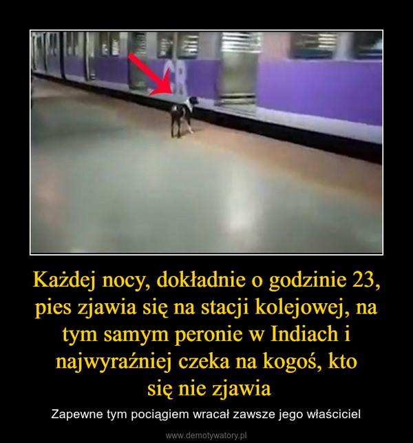 Każdej nocy, dokładnie o godzinie 23, pies zjawia się na stacji kolejowej, na tym samym peronie w Indiach i najwyraźniej czeka na kogoś, kto się nie zjawia – Zapewne tym pociągiem wracał zawsze jego właściciel
