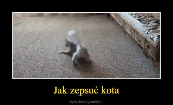 Jak zepsuć kota –
