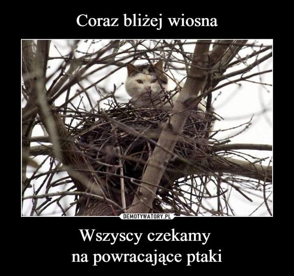 Wszyscy czekamy na powracające ptaki –
