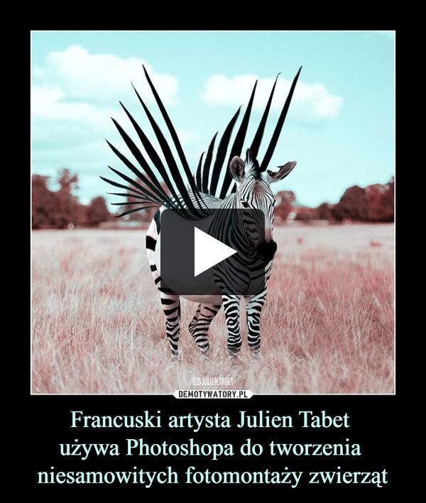 Francuski artysta Julien Tabet używa Photoshopa do tworzenia niesamowitych fotomontaży zwierząt –