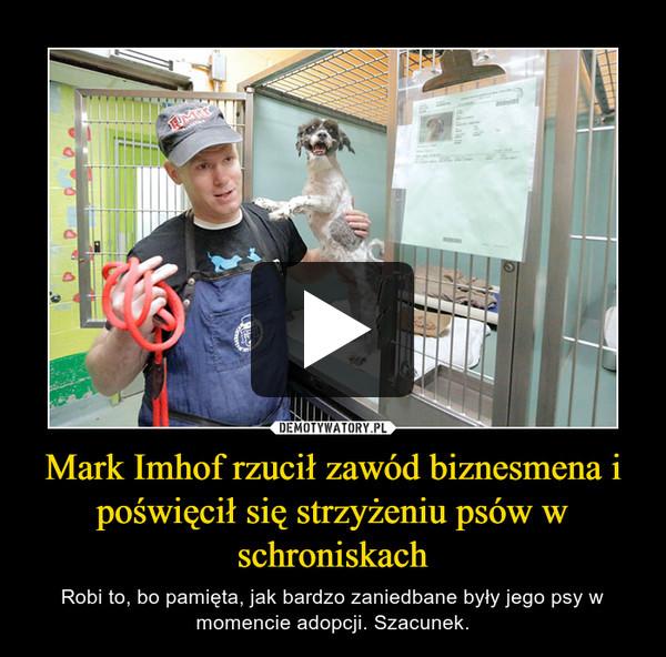 Mark Imhof rzucił zawód biznesmena i poświęcił się strzyżeniu psów w schroniskach – Robi to, bo pamięta, jak bardzo zaniedbane były jego psy w momencie adopcji. Szacunek.