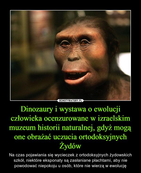 Dinozaury i wystawa o ewolucji człowieka ocenzurowane w izraelskim muzeum historii naturalnej, gdyż mogą one obrażać uczucia ortodoksyjnych Żydów