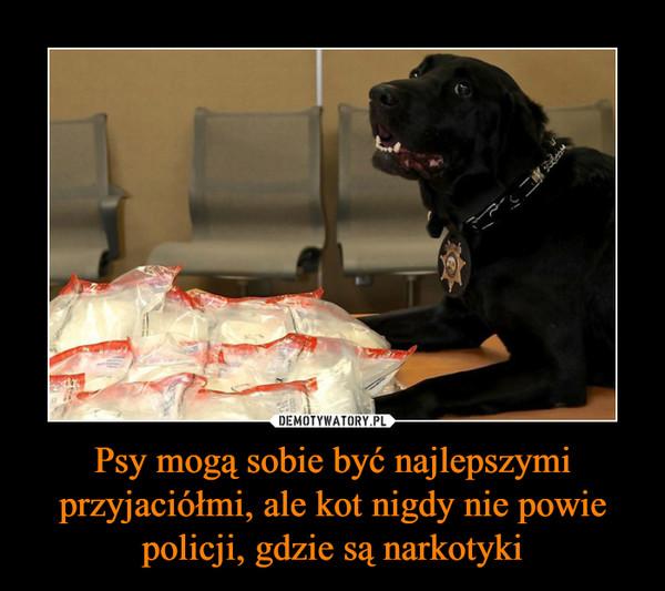 Psy mogą sobie być najlepszymi przyjaciółmi, ale kot nigdy nie powie policji, gdzie są narkotyki –