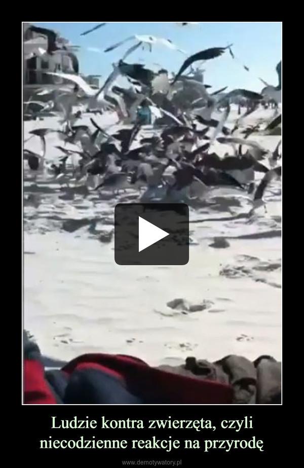 Ludzie kontra zwierzęta, czyli niecodzienne reakcje na przyrodę –