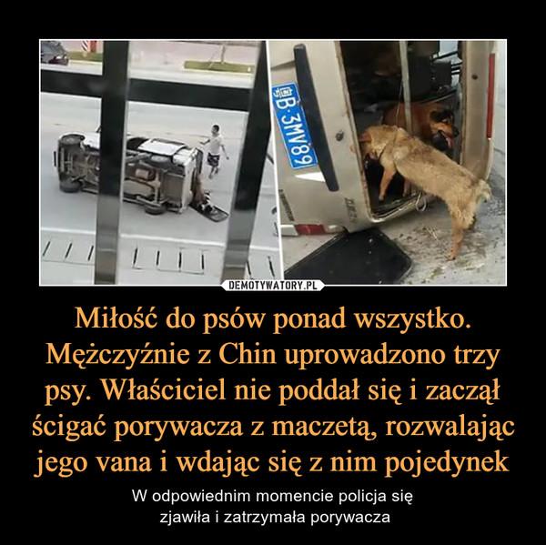 Miłość do psów ponad wszystko. Mężczyźnie z Chin uprowadzono trzy psy. Właściciel nie poddał się i zaczął ścigać porywacza z maczetą, rozwalając jego vana i wdając się z nim pojedynek – W odpowiednim momencie policja się zjawiła i zatrzymała porywacza