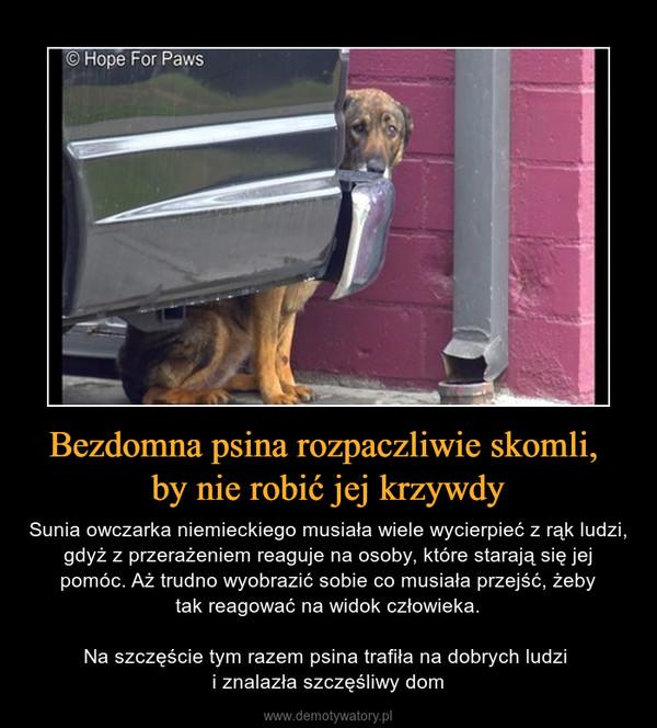 Bezdomna psina rozpaczliwie skomli, by nie robić jej krzywdy – Sunia owczarka niemieckiego musiała wiele wycierpieć z rąk ludzi, gdyż z przerażeniem reaguje na osoby, które starają się jej pomóc. Aż trudno wyobrazić sobie co musiała przejść, żebytak reagować na widok człowieka. Na szczęście tym razem psina trafiła na dobrych ludzi i znalazła szczęśliwy dom