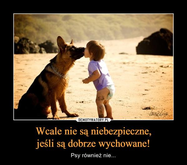 Wcale nie są niebezpieczne,jeśli są dobrze wychowane! – Psy również nie...