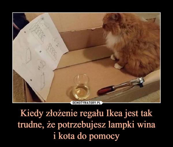 Kiedy złożenie regału Ikea jest tak trudne, że potrzebujesz lampki winai kota do pomocy –