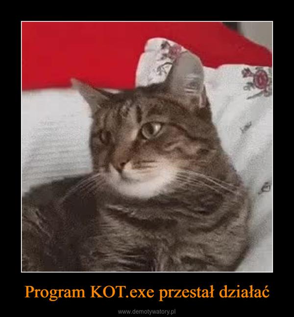 Program KOT.exe przestał działać –