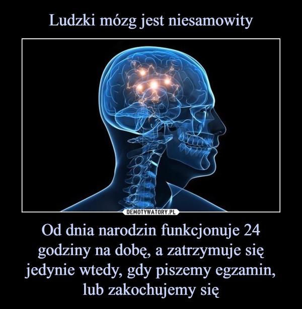 Od dnia narodzin funkcjonuje 24 godziny na dobę, a zatrzymuje się jedynie wtedy, gdy piszemy egzamin, lub zakochujemy się –