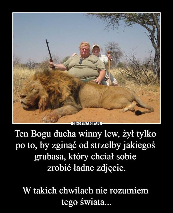 Ten Bogu ducha winny lew, żył tylko po to, by zginąć od strzelby jakiegoś grubasa, który chciał sobie zrobić ładne zdjęcie.W takich chwilach nie rozumiem tego świata... –