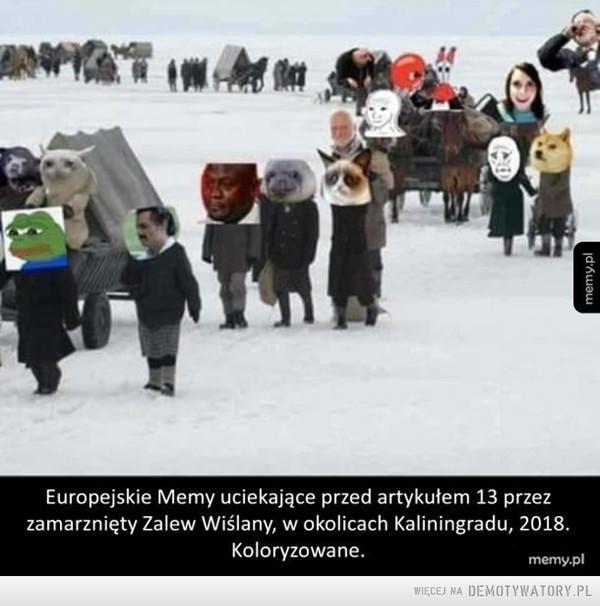 Memy –