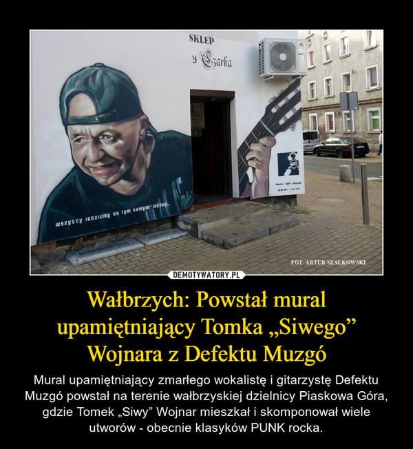 """Wałbrzych: Powstał mural upamiętniający Tomka """"Siwego"""" Wojnara z Defektu Muzgó – Mural upamiętniający zmarłego wokalistę i gitarzystę Defektu Muzgó powstał na terenie wałbrzyskiej dzielnicy Piaskowa Góra, gdzie Tomek """"Siwy"""" Wojnar mieszkał i skomponował wiele utworów - obecnie klasyków PUNK rocka."""