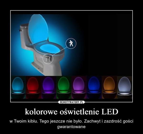 kolorowe oświetlenie LED – w Twoim kiblu. Tego jeszcze nie było. Zachwyt i zazdrość gości gwarantowane
