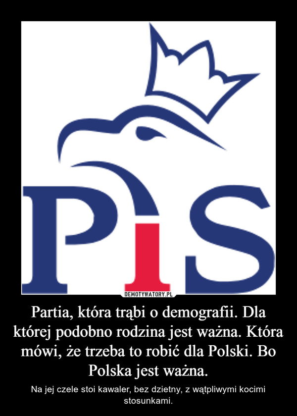 Partia, która trąbi o demografii. Dla której podobno rodzina jest ważna. Która mówi, że trzeba to robić dla Polski. Bo Polska jest ważna. – Na jej czele stoi kawaler, bez dzietny, z wątpliwymi kocimi stosunkami.