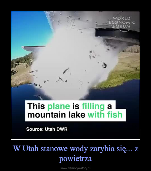 W Utah stanowe wody zarybia się... z powietrza –