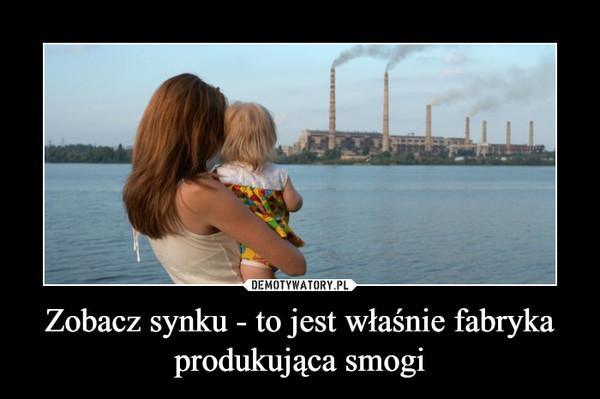 Zobacz synku - to jest właśnie fabryka produkująca smogi –