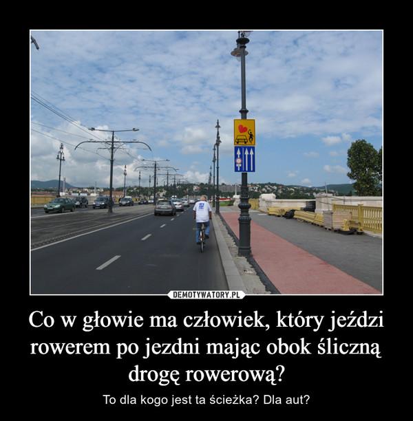 Co w głowie ma człowiek, który jeździ rowerem po jezdni mając obok śliczną drogę rowerową? – To dla kogo jest ta ścieżka? Dla aut?