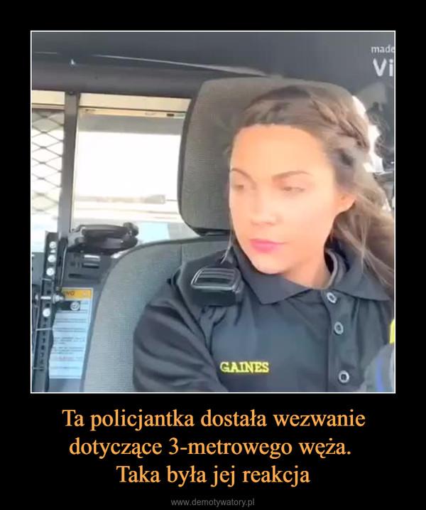 Ta policjantka dostała wezwanie dotyczące 3-metrowego węża. Taka była jej reakcja –
